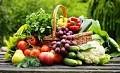 """Metodinė − informacinė medžiaga """"Apie mokyklinio amžiaus vaikų sveikatai palankių maisto produktų pasirinkimą"""""""