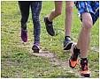 Vasaros belaukiant. Sportinė avalynė: vieni batai tinkamesni sparčiam ėjimui, kiti – bėgimui